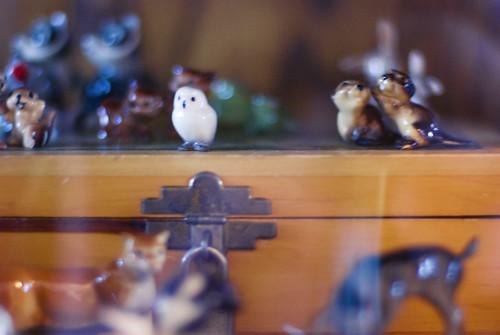 Always watching (by pricklypearbloom)