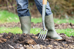 Compost Gardening Trenching Method
