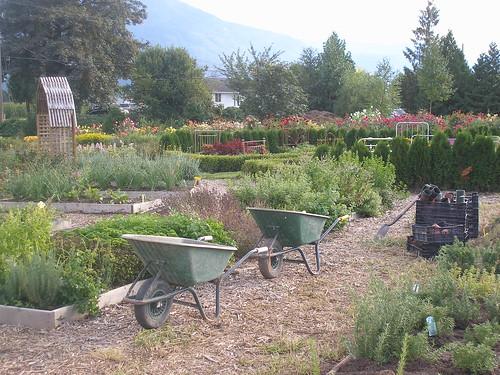Fraser Valley Pulse visits Bloomz n' Herbz