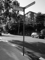 King Avenue