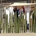 Mexico Mitla