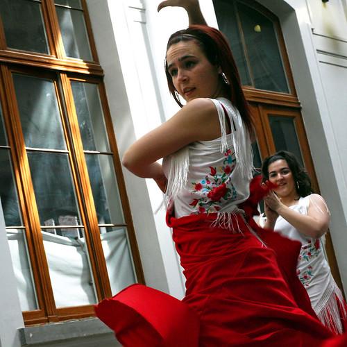 Flamenco ¬ 0127