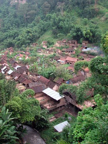 village plantation de café