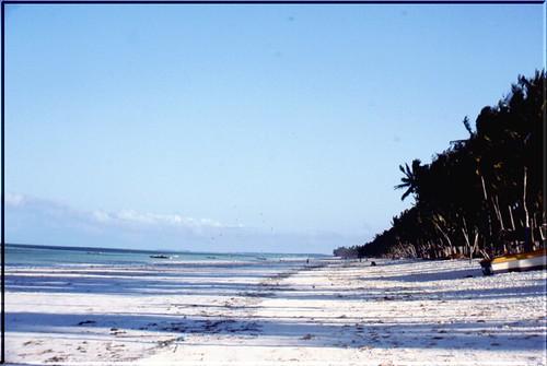 "TZ 98 Zanzibar • <a style=""font-size:0.8em;"" href=""http://www.flickr.com/photos/49106436@N00/2450786641/"" target=""_blank"">View on Flickr</a>"