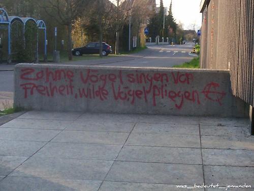 german graffiti: Zahme Vogel singen von Freiheit, vilde Vogel fliegen (then an anarchist symbol)