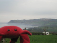 Scarborough & Whitby (5) (chicgeekuk) Tags: red laura animal toy crab plush claw abroad stuffedanimal seafood claude crabs crustacean claws kishimoto travellingtoys travellingtoy laurakishimoto laurakishimotoca claudeabroad