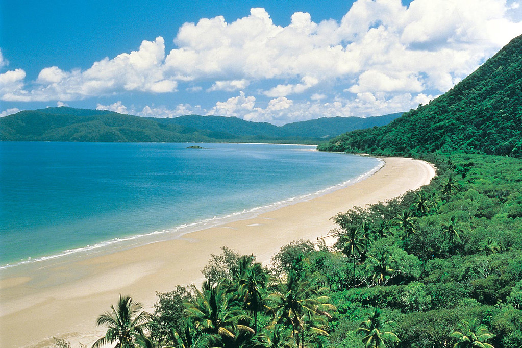 Cairns - Cape Tribulation