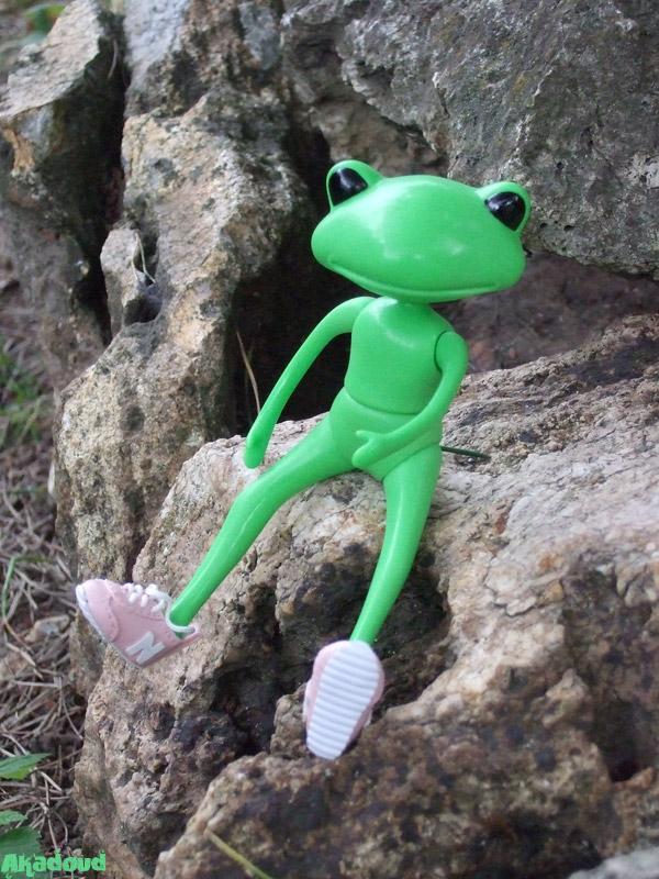 My Wonder Frog... Nels... à la plage... p3 2593362012_96c51d62d0_o