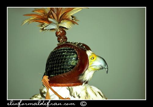 Aguila 1
