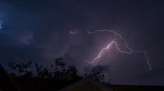 Thunder (Jonathan Bengtsson) Tags: storm tree night canon dark eos sweden jonathan lightning thunder varberg halland 400d removedfromadobelightroomfortags stenasavagen