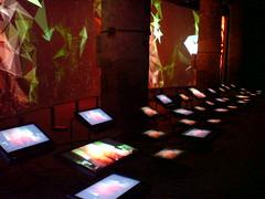 Biennale di Venezia 2008