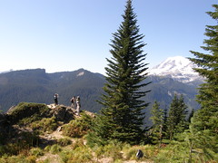 View rock partially up Shriner peak trail.