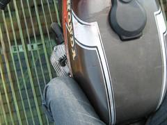 IMG_2264 (paintfumesmahgee) Tags: run roach 08