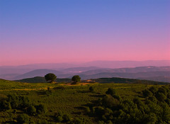 Galilee Heights (NatashaP) Tags: trees landscape israel twilight nikon searchthebest dusk galilee hills explore d40 supershot interestingness32 abigfave anawesomeshot infinestyle theunforgettablepictures infinestile theperfectphotographer pfogold beautifullayersinthemountains