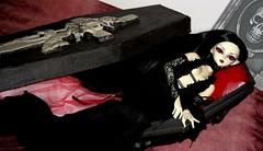 Blette in her coffin (plumaluna07@sbcglobal.net) Tags: ball doll dolls bjd dollfie jointed