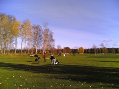 Autumn Golf in the Nordic #7