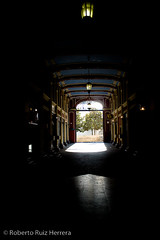 Going out of the darkness (Berts @idar) Tags: calle zaragoza pasaje efs1855mmf3556 espaa canoneos400ddigital ojosajenos ojosajenoscom