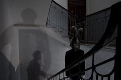 Lapin (le scale) (bellimarco) Tags: light shadow red color rabbit eye home ex canon casa colore mask conejo garage magic ghost knife ombre occhi demon devil marco mago bagno rosso belli caffè fantasma luce lapin decadence diavolo maschera alchemy padova deus magia coniglio alchimia veneto drak galline orrore machina maligno decadenza manichino giudizio surreale cilindro coltelli peloso orecchie panno demone malefico cattedra 40d evocazione feticcio perlomeno