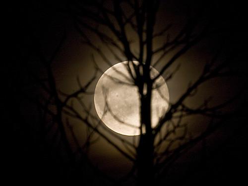 Zie de maan.../ Look the moon