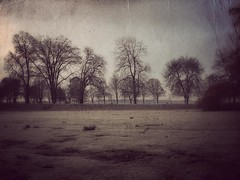cold snap (sp_clarke) Tags: trees texture vancouver photoshop frost antique grunge englishbay stanleypark