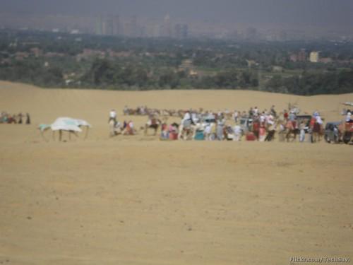 Desert Ride 77