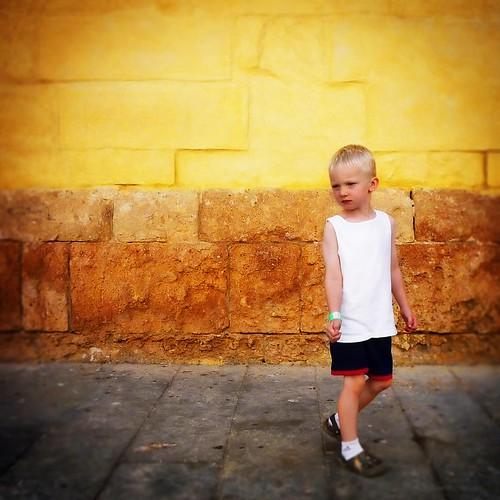Noah in Cordoba