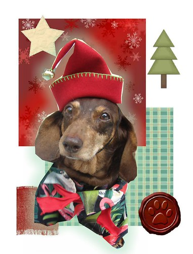 Lucy Christmas Elf
