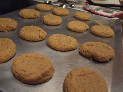butter pecan cookies 014