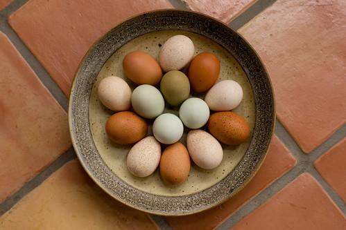 Poulterer's Dozen