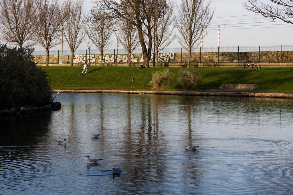 Blackrock Park - County Dublin