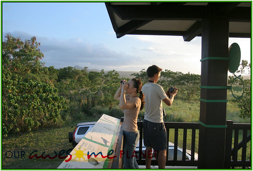 Bird Watching @ Nuvali-30