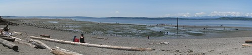 Edmonds Marina Park at a May Minus Tide