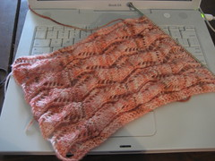 lace ribbon scarf, 3.5 repeats in (noirbettie) Tags: knitting handknit knitty ravelry unioncenterknits laceribbonscarf