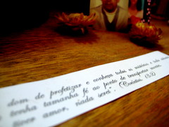 a slip of words (parttimefarm) Tags: brasil words desk chacara echapora tialu