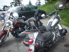 vacation june 08 007 (Silver Mountain Man) Tags: bike harley motorcycle biker davidson