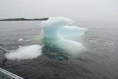 Labrador Fishing Trip 2008