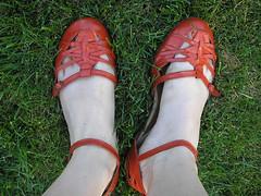Sapato vermelho {6}