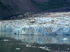 Colony Glacier