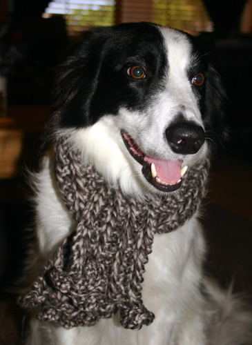 Snoopy's scarf
