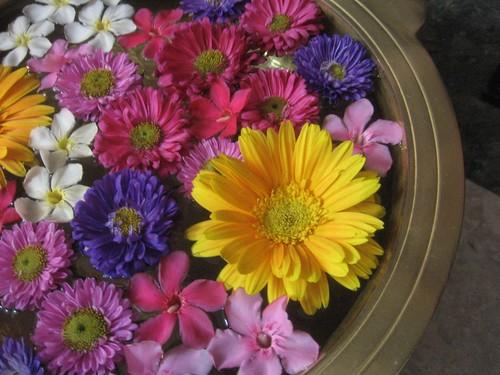 Flowers...presented