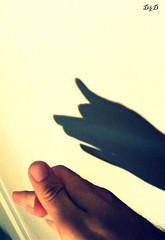 The Shadow (D'n'D ) Tags: shadow dog chien co cane fuji hand ombra perro hund mano fujifilm pas  s800 inmyroom goldenglobe digitalcameraclub caimano nellamiastanza platinumphoto chineseshadow colourartaward s5800 yourstyle flickrbestpics ombracinese