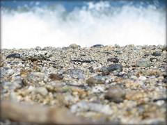arriva l'onda (•:• panti •:•) Tags: mare sabbia onda schiuma