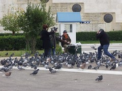 Parliament Square, Athens, Greece (Tilemahos Efthimiadis) Tags: building birds square pigeons guard hellas parliament athens greece 100views 50views syntagma   hellenicparliament   evzonas  unknownsoilder    address:city=athens  address:country=greece