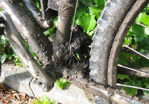 Post ride mucky bike
