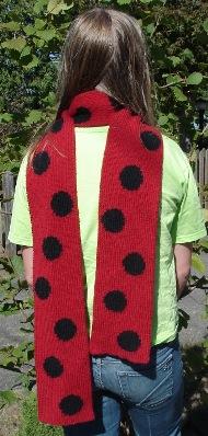 ladybug 057cr1