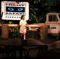 Singapore Night Safari (Rodney Thomson) Tags: singapore leopard nightsafari