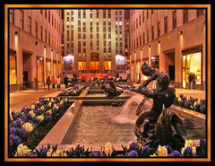 New York Rockefeller Center (Mike G. K.) Tags: flowers people usa ny newyork window fountain night buildings lights purple rockefellercenter statues shops therock hdr photomatix 1exp mywinners singlejpghdr theperfectphotographer mikegk:gettyimages=submitted