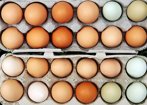 Eggs from our chickens by Perfectly Natural