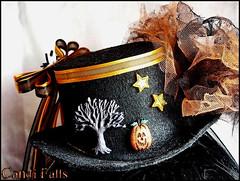 cat costume accessories