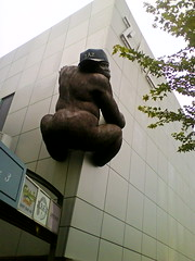 Anak King Kong sesat